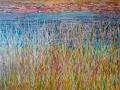 marsh-detail
